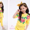 детский спортивный костюм на девочку розы 271215 фотография №1