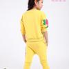 детский спортивный костюм на девочку розы 271215 фотография №2