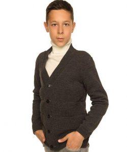 кофта для мальчика в школу 1353 фотография