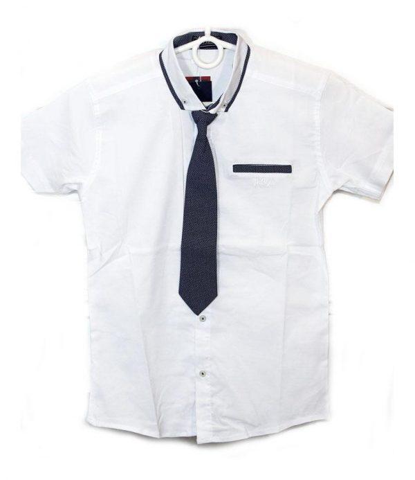 рубашка для мальчика с коротким рукавом белая 5054 фотография