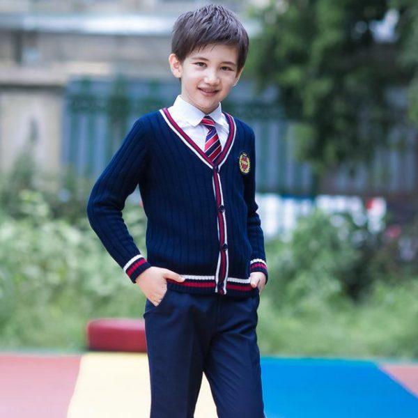 школьный костюм для мальчика, британи 270618 фотография