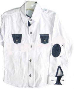 школьная рубашка для мальчика 5011 фотография