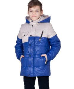 детская демисезонная куртка для мальчика, реми 110916 фотография